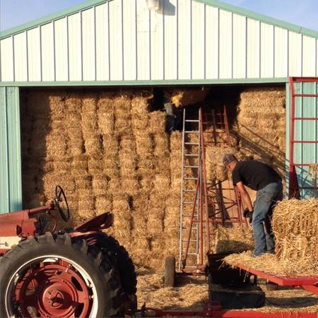 last fill straw shed